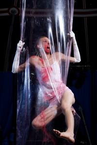 Leo Hedman Aerial Plastic
